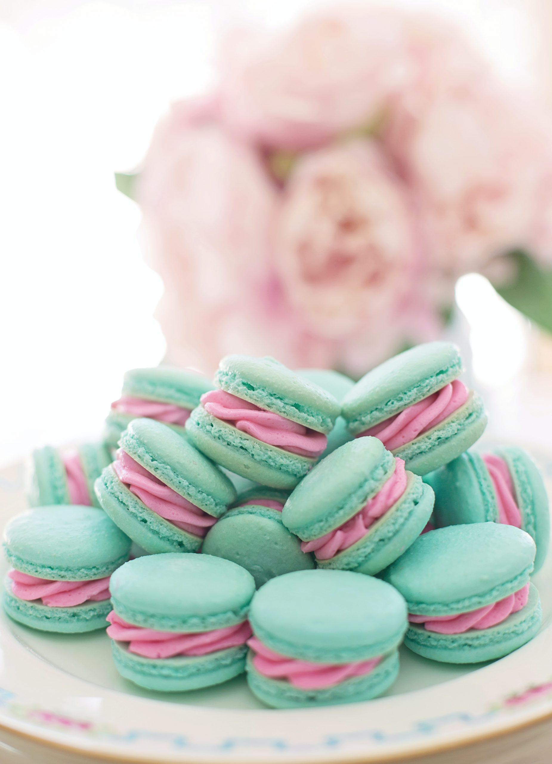 pleasing a gentle femdom with macarons